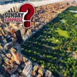 Sunday Surprise New York Vignette