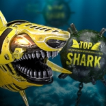 Top Shark Vignette