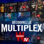 Vignette Multiplex