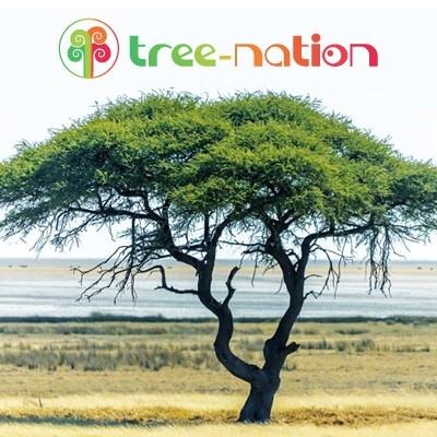 Plantez un arbre pour sauver la planète ! (don de 75 euros)